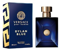 Versace Pour Homme Dylan Blue, 100 ml