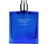 Tester Escentric Molecules The Beautiful Mind Series Boudicca Wode 100 мл