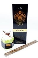 Аромадиффузор с палочками Tiziana Terenzi Gumin 100 ml